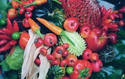 Frutta, verdure e bacche di autunno Immagine Stock Libera da Diritti