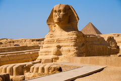 Full Sphinx Profile Pyramid Giza Egypt Stock Images