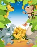 Fun Jungle Animals Border Stock Photography