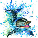 Funny dolphin with watercolor splash textured Royalty Free Stock Photos