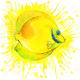 Funny gold fish with watercolor splash textured Stock Photography