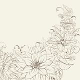 Garland of chrysanthemum isolated. Royalty Free Stock Photos