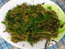 Gekookte Broccoli Stock Afbeeldingen