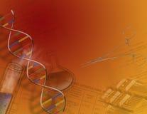 Genetics & Science Royalty Free Stock Photos