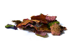 Getrocknete patchouly Blätter Lizenzfreie Stockbilder
