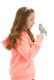Girl with her pet bird budgerigar Royalty Free Stock Photography
