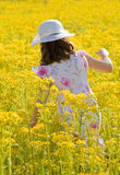 Girl Picking Flowers Stock Images