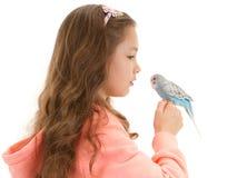Girl speaking to tame pet bird budgerigar Royalty Free Stock Image