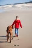 Girl walking dog Stock Images