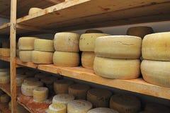 Goat cheese Royalty Free Stock Photos