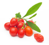 Goji berry isolated Royalty Free Stock Image