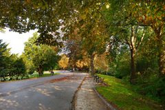 Golden autumn time in Bernstoff park Royalty Free Stock Photography