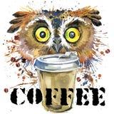 Gráficos do t-shirt da coruja a ilustração do café e da coruja com aquarela do respingo textured o fundo Fotos de Stock