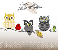 Graphic patterned set of Owls Stock Photos