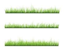 Grass Stock Image