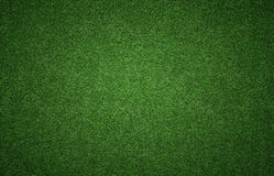 Grass Background Texture Royalty Free Stock Photos