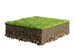 Grass and soil profile Royalty Free Stock Photography
