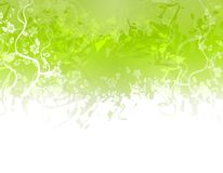 Green Flower Texture Border Royalty Free Stock Photo
