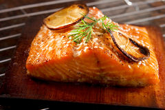 Grilled salmon Royalty Free Stock Photos