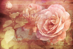 Grunge texture with floral background in vintage style. Romantic Stock Image