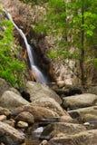 Gualba Gorg Negre environment . Montseny, Spain. Stock Image