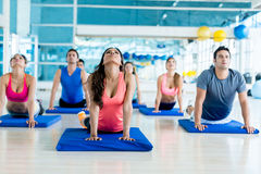 Gym people in a yoga class Royalty Free Stock Images