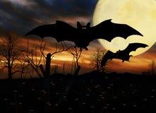 Halloween Bats Full Moon Stock Image