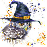 Halloween owl and witch hat. Watercolor illustration background Stock Photos