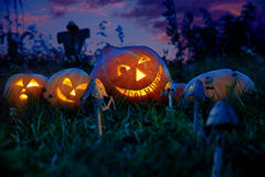 Halloween pumpkins lie on a pumpkin field at night with the eyes of the gears hours. Royalty Free Stock Image