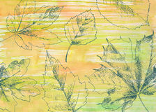 Hand drawn autumn leaves Stock Photo