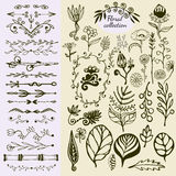 Hand Drawn vintage floral elements. Big set of wild flowers, leaves, swirls, border. Decorative doodle elements Stock Photos
