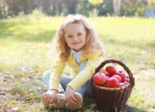 Happy child and autumn basket with apples sitting outdoors Stock Image