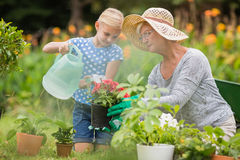 Happy grandmother with her granddaughter gardening Stock Photo