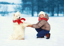 Happy teenager boy playing with white Samoyed dog outdoors in the park on a winter day, positive dog gives paw owner Stock Image