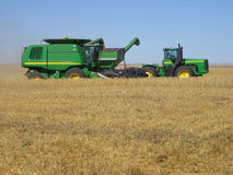 Harvesting wheat Royalty Free Stock Image