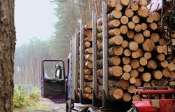 Haulage timber Royalty Free Stock Image