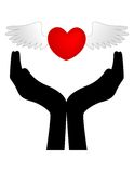 Heart with wings on hands Royalty Free Stock Photos