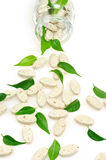 Herbal supplement pills and fresh leaves  spilling Royalty Free Stock Image