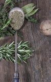 Herbs Metal Spoon Stock Photography