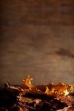 Herfst stilleven Stock Afbeelding