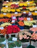 Het overzees van de bloem Stock Fotografie