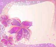 Hintergrund mit Rosen-Blumen Lizenzfreie Stockbilder