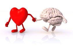 Hjärta och hjärnhand - in - hand Royaltyfri Foto