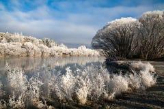 Hoar frost Stock Photo