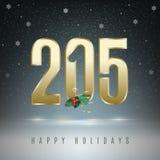 2015 holidays season. Stock Photography