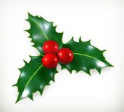 Holly, Christmas decoration Stock Photography