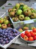Home gardening harvest Stock Photo