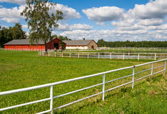 Horse farm Stock Photography