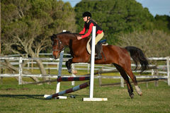 Horse riding girl child show jumping Stock Image
