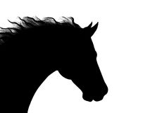 Horse head silhouette + VECTOR Royalty Free Stock Image